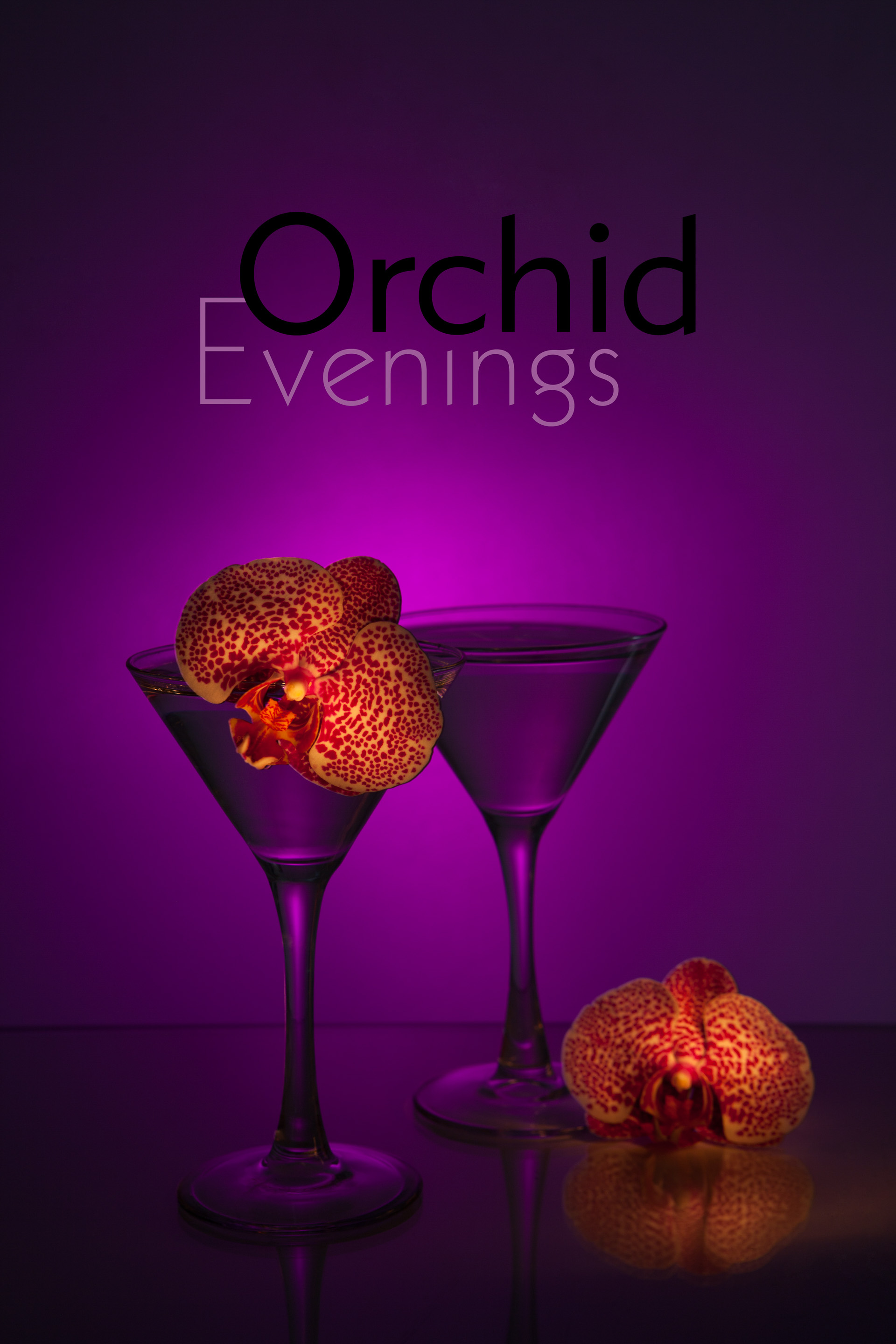 Orchid Evenings _MG_7964